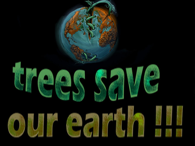 trees save our earth...