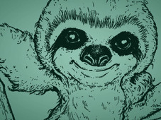 Sloth Life T-Shirt Design by