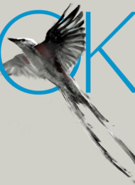 OK by Kdeuce T-Shirt
