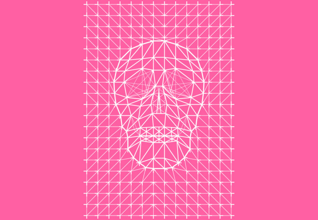 Triangles and Line Art Skull