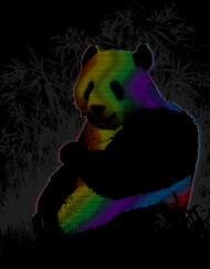 Panda in technicolor T-Shirt