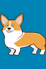 Cute Pembroke Welsh Corgi