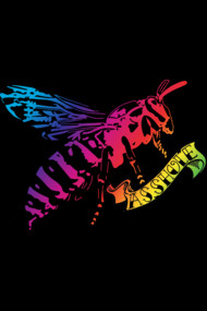 Rainbow Wasps are...