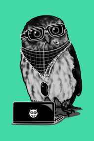 Limited Edition - Smart Owl