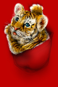 Red Pocket Tiger