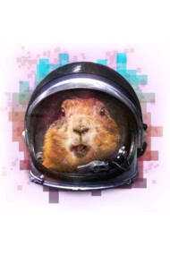 Prairie Dog In Space