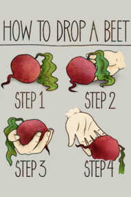 How To Drop A Beet