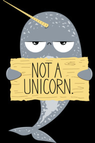 Not A Unicorn