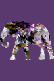 Elephant [Triangulated Series]