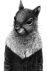 squirrel in coat