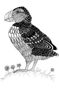 Zentangle Puffin Bird