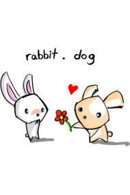 rabbit.dog 1