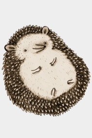 Plump Hedgehog