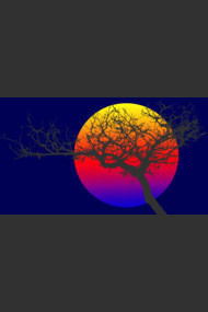 abstract tree sunset