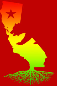 California Roots (Rasta surfer colors)