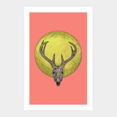deer skull and the full moon
