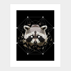 Geometric Raccoon
